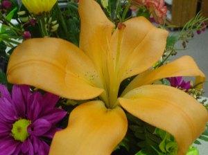 NLW flowers
